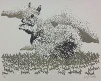 Squirrel copy