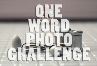 One Word Photo Challenge Badge