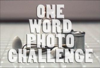 One Word Photo Challenge Badge