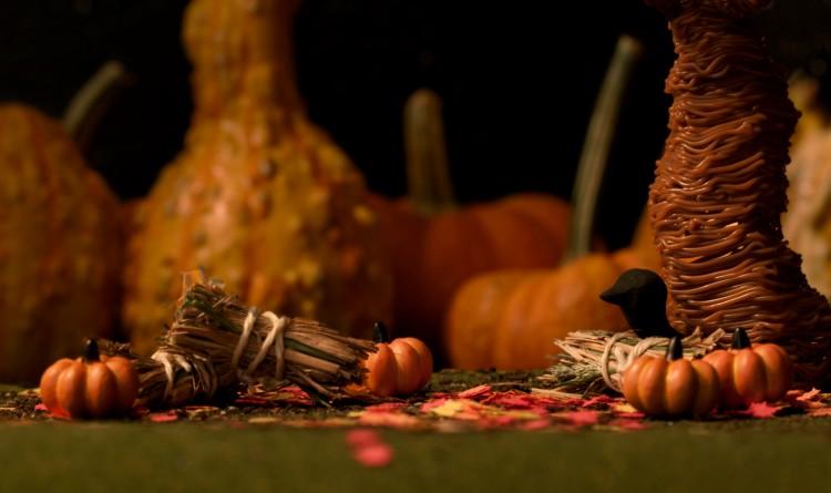 pumpkins wp