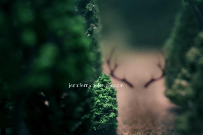 antlers-2