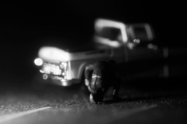 Headlights: Truck Tire