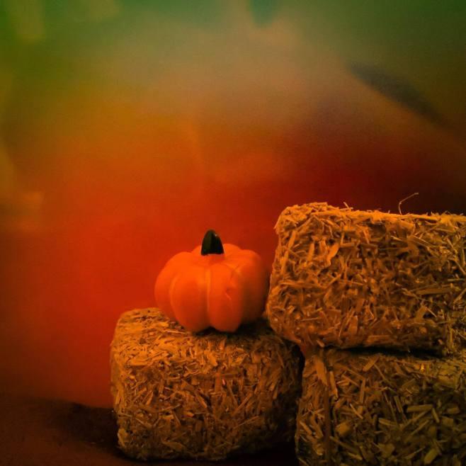 pumpkin-and-hay-bales