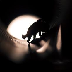 sewer-rat-1