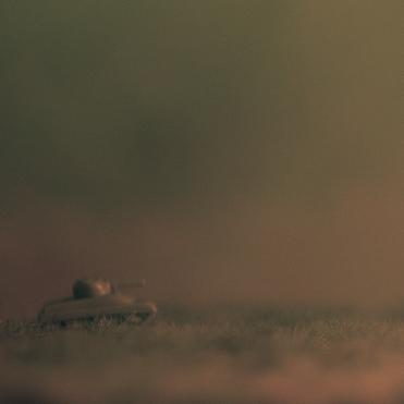one-tank-fern