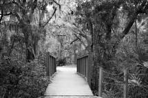 arboretum-14