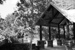arboretum-16