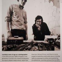 David Levinthal Smithsonian poster