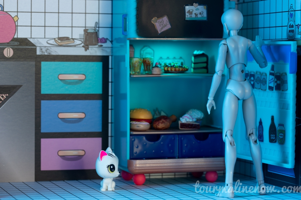 Figure looks into refridgerator filled with sweets, cat sits nearby, toy photography by Tourmaline .