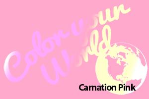 carnation pink color your world photo challenge badge