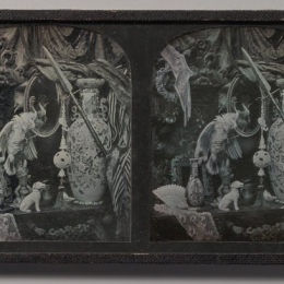 Still life with Cockatoo, mirror, ornamental ball, vases and lace, Thomas Richard Williams, 1850s, Daguerreotype