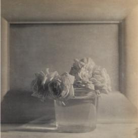 Adolph de Meyer, Roses in vase, 1911