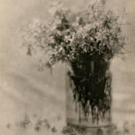Adolph de Meyer, Still life lilacs in glass, 1908