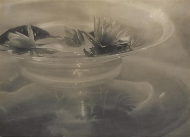 Adolph de Meyer, Water Lilies, 1906