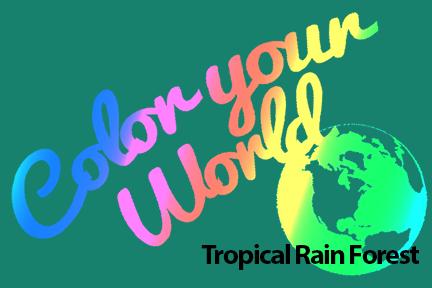 cyw tropical rain forest